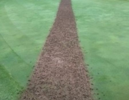 Aerification-Cores